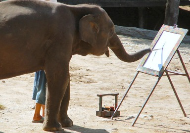 Ruby_the_painting_elephant